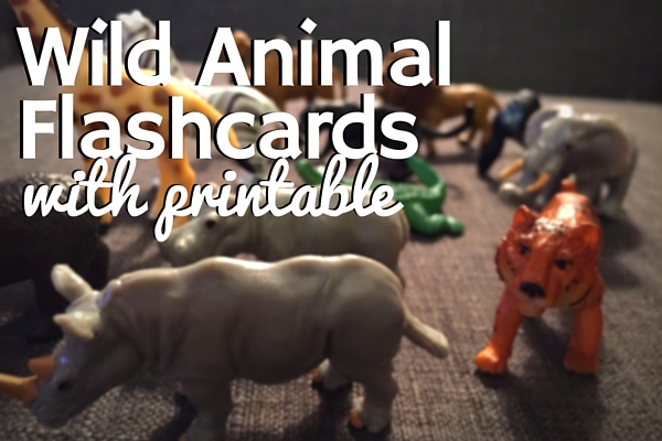 picture relating to Printable Animal Flash Cards referred to as Wild Animal Flash Playing cards (Printable) Appears, Pores and skin, and Added