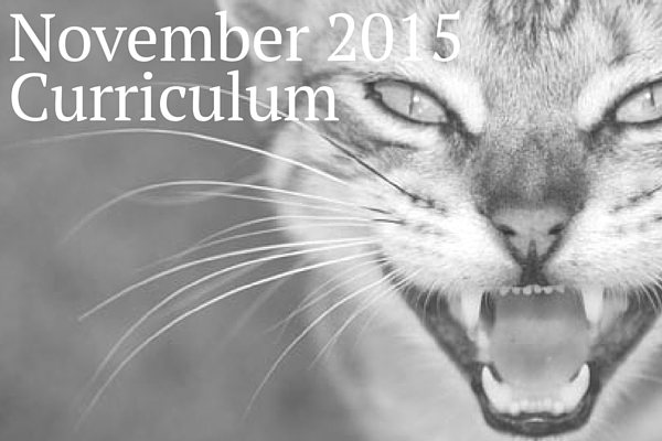 November 2015 Curriculum